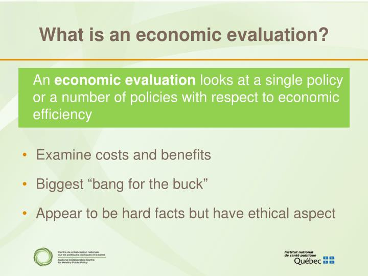 What is an economic evaluation?