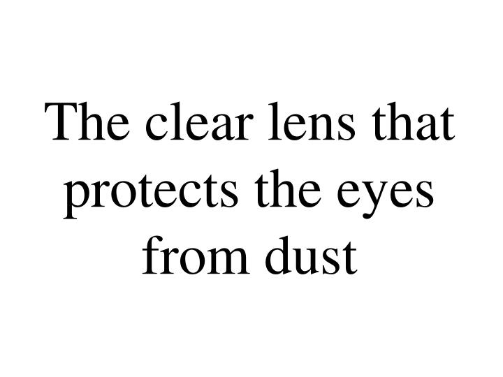 The clear lens that protects the eyes from dust