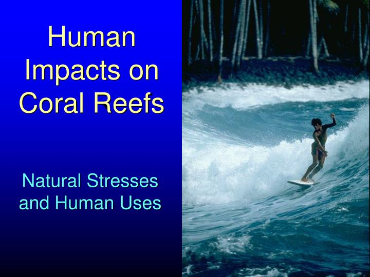 human impacts on coral reefs n.
