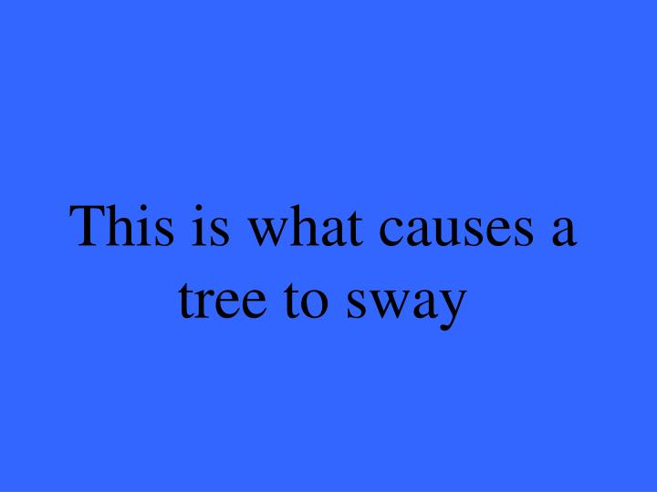 This is what causes a tree to sway