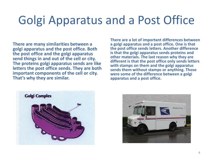Golgi Apparatus and a Post Office