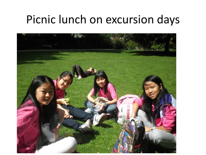 Picnic lunch on excursion days