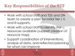 key responsibilities of the stf
