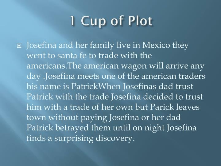 1 cup of plot