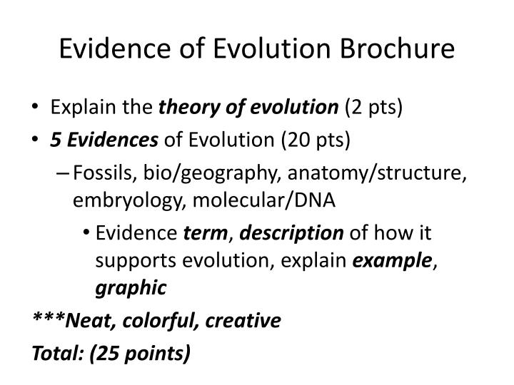PPT - Evidence of Evolution Brochure PowerPoint Presentation - ID ...
