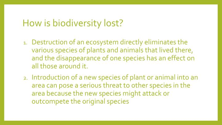 How is biodiversity lost?
