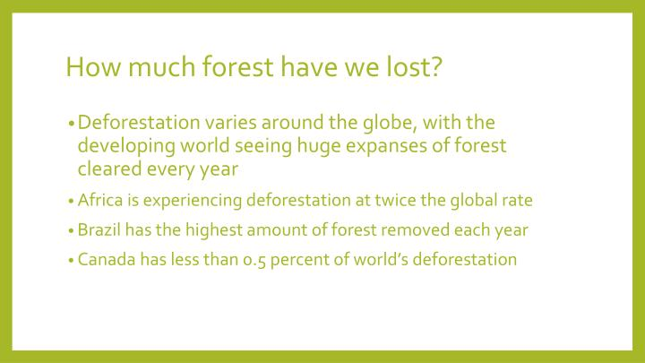 How much forest have we lost?