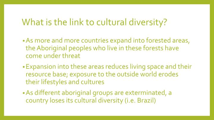 What is the link to cultural diversity?