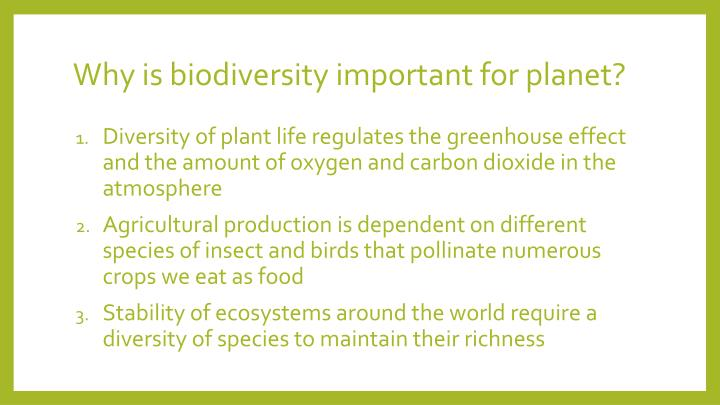 Why is biodiversity important for planet?