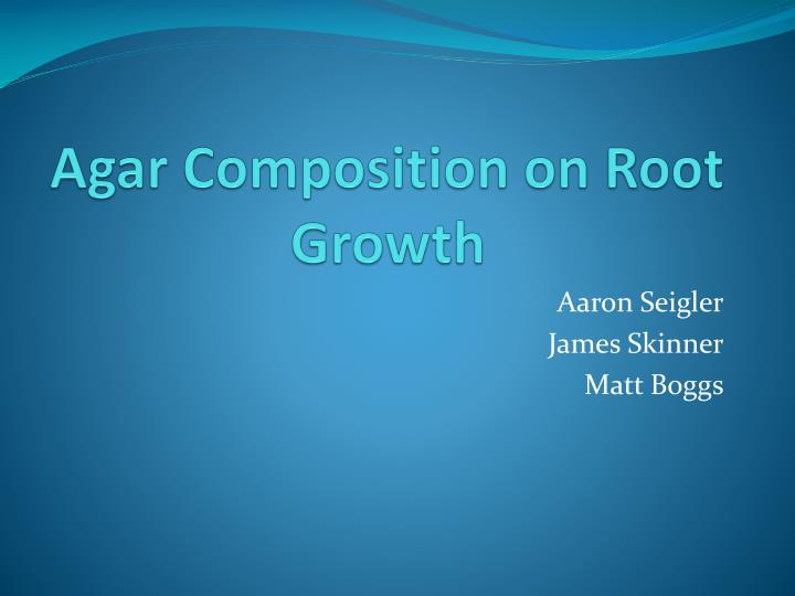 agar composition on root growth n.