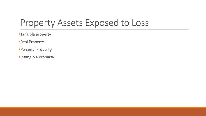 Property Assets Exposed to Loss