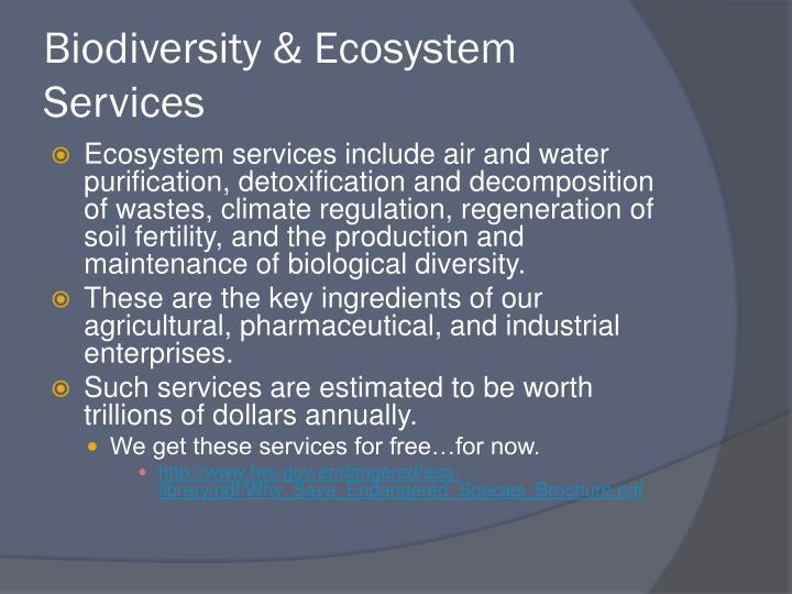 Biodiversity & Ecosystem Services
