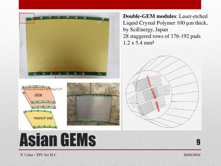 Double-GEM modules