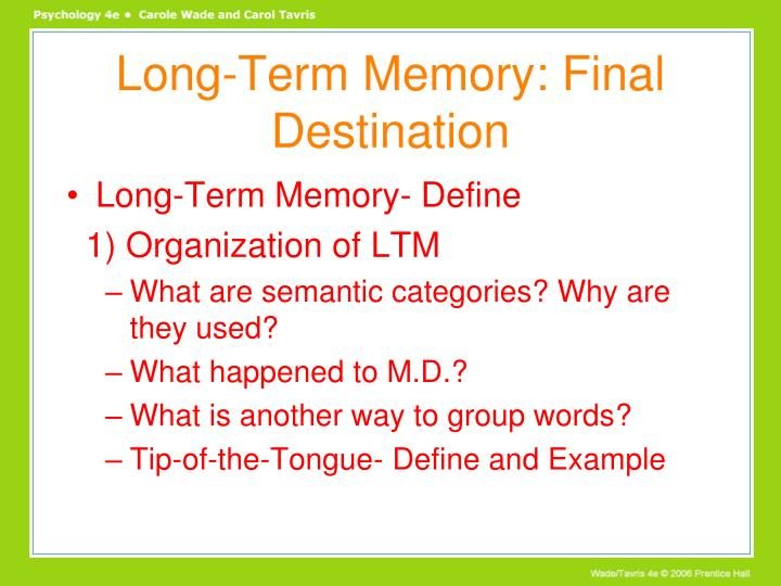 Long-Term Memory: Final