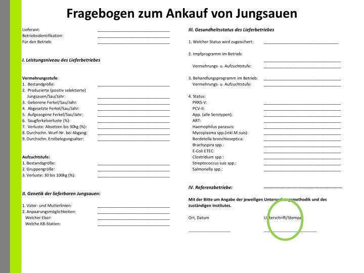 Fragebogen zum Ankauf von Jungsauen