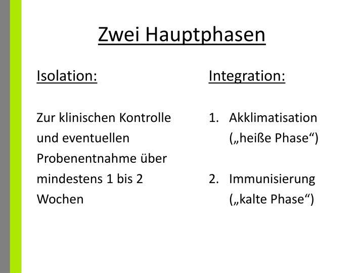 Zwei Hauptphasen