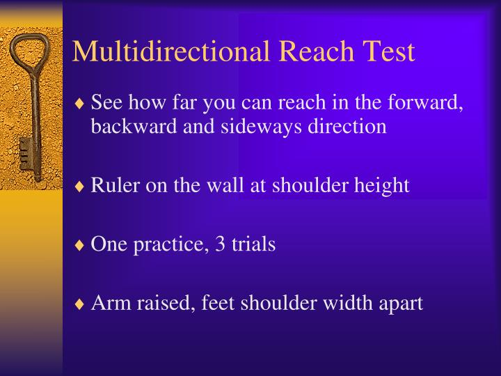 Multidirectional Reach Test