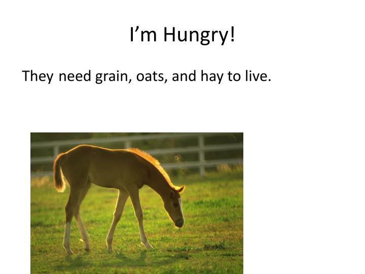 I m hungry