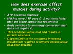 how does exercise affect muscles during activity