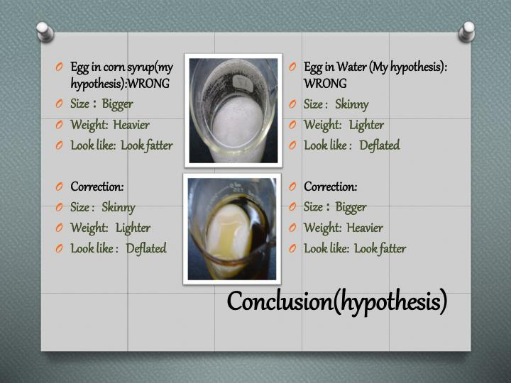 Conclusion(hypothesis)