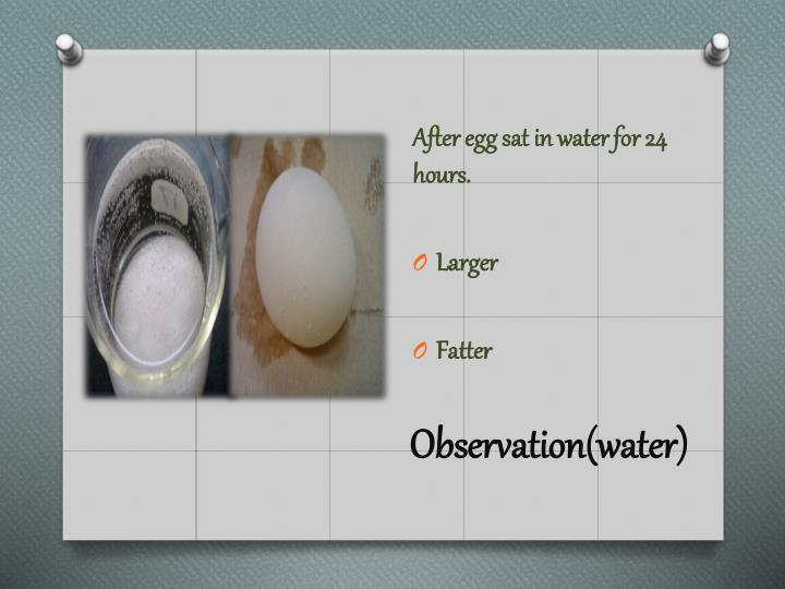 Observation(water)