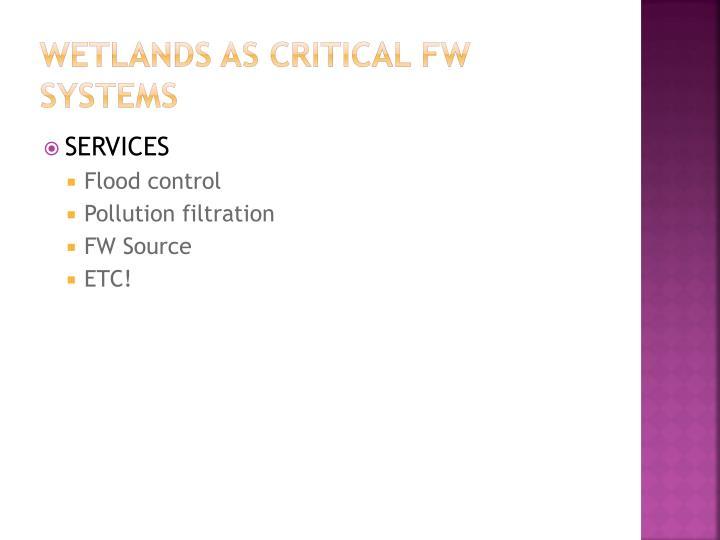 wetlands as critical