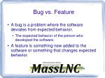 bug vs feature