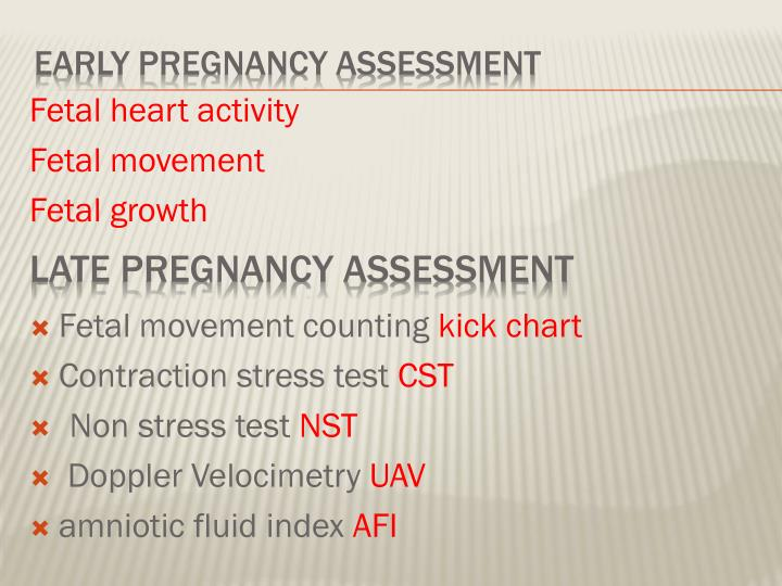 Early pregnancy assessment