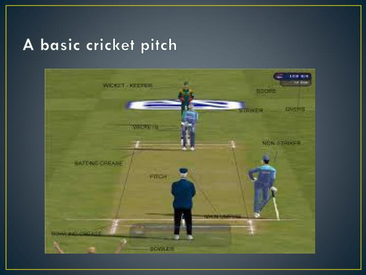 A basic cricket pitch