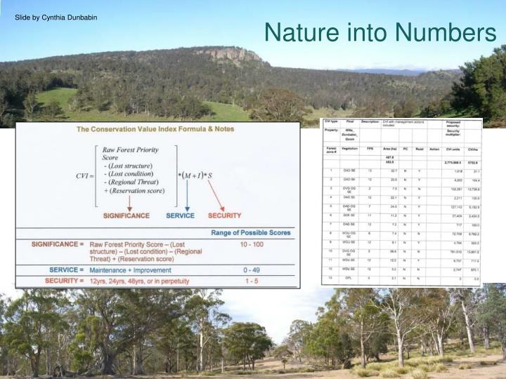 Nature into Numbers