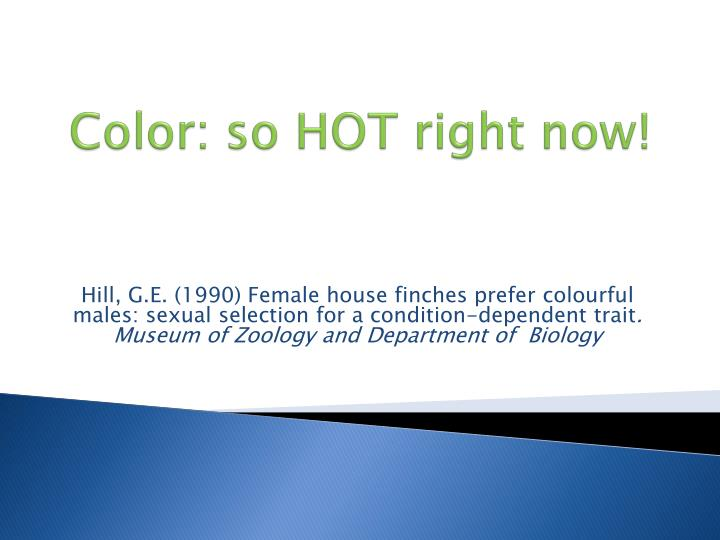 Color so hot right now