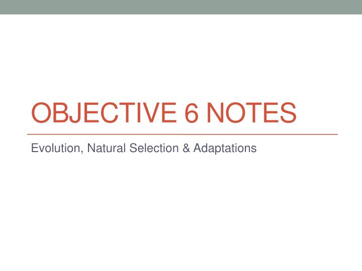 Objective 6 notes