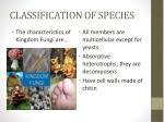 classification of species10