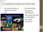 classification of species12
