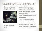 classification of species8
