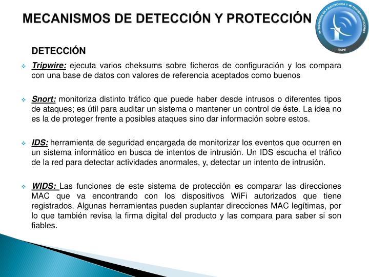 MECANISMOS DE DETECCIÓN Y PROTECCIÓN