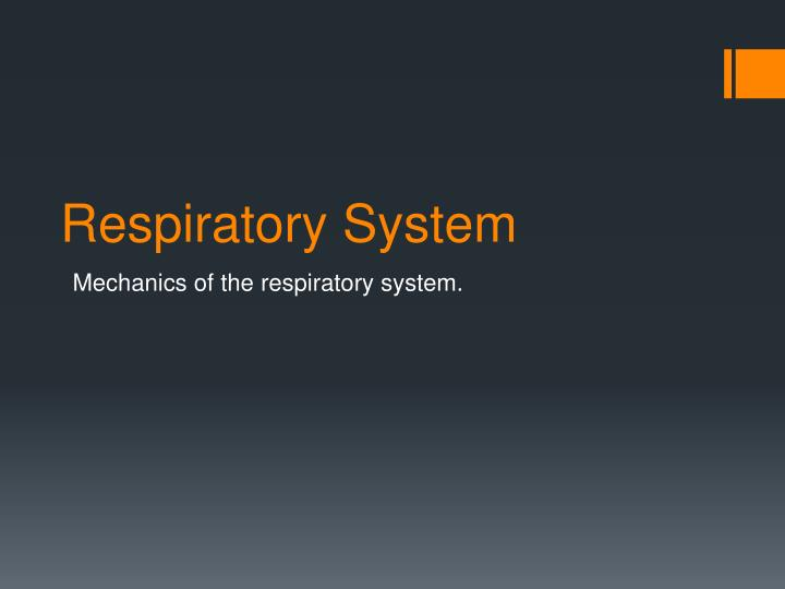 respiratory system essay introduction Neonatal ventilators support the respiratory system of the newborn facilitating the process of respiration and let the neonatal ventilators essay introduction.