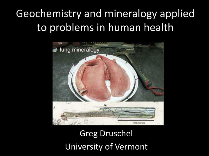 geochemistry and mineralogy applied to problems in human health n.