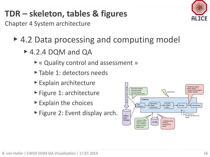 TDR – skeleton, tables & figures