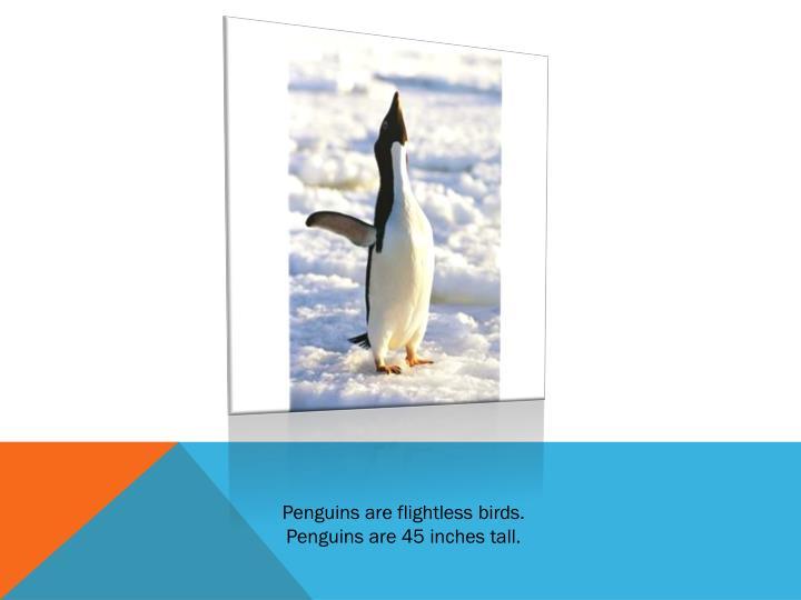 Penguins are flightless birds.