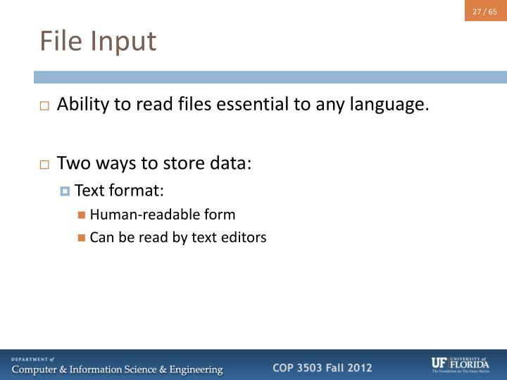 File Input