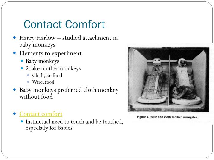 Contact Comfort