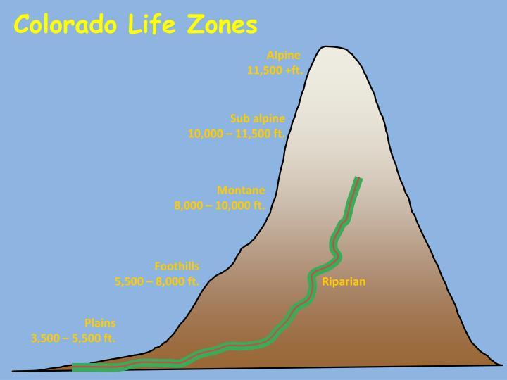 Colorado Life Zones