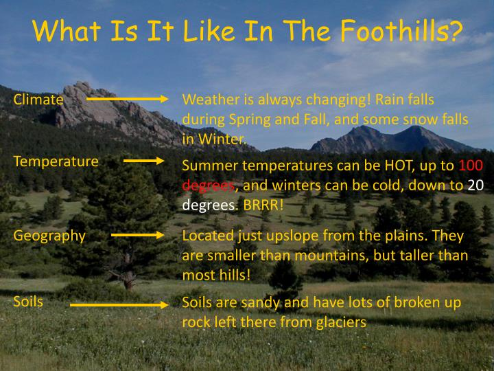 What Is It Like In The Foothills?