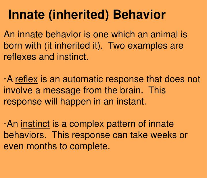 Ppt Animal Behavior Powerpoint Presentation Id2805122