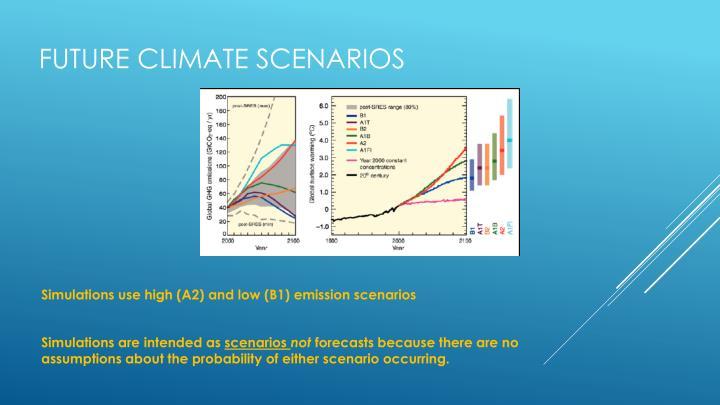 Future climate scenarios