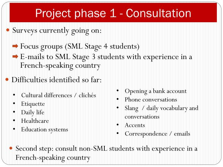 Project phase 1 - Consultation