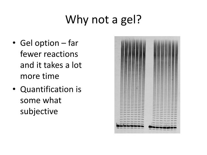 Why not a gel?