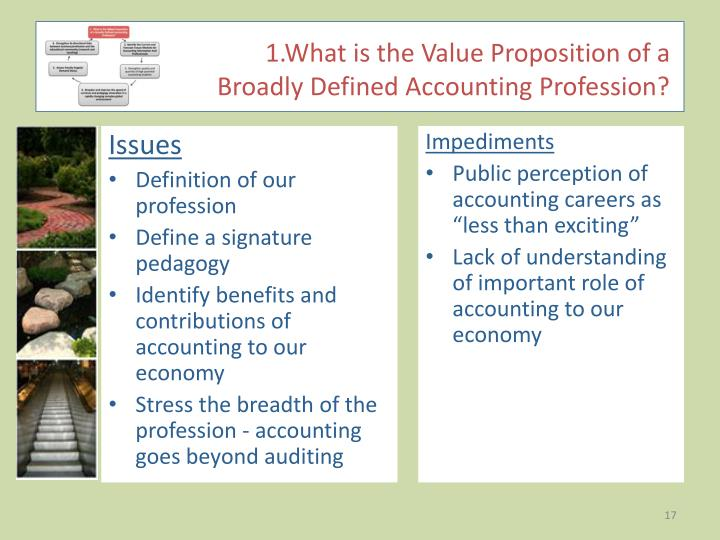 accounting by the american institute of American institute of cpas® the aicpa proposal: joining forces to protect, promote and grow an evolving accounting profession.