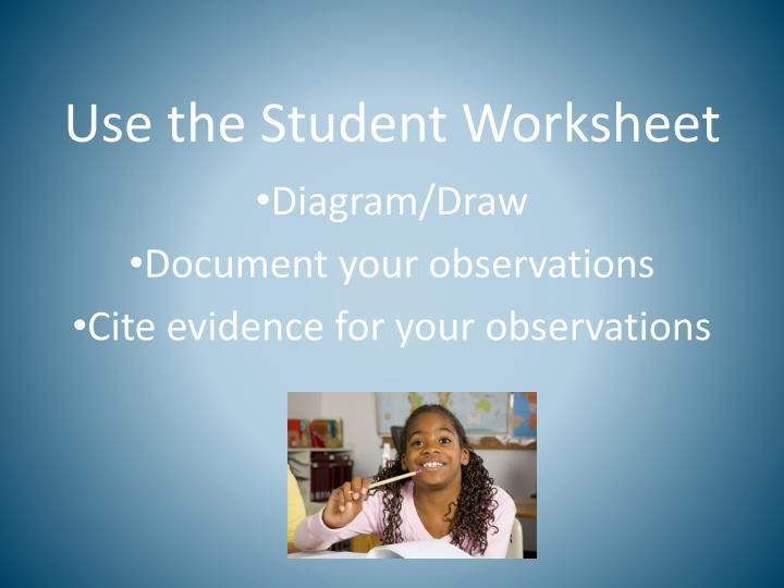 Use the Student Worksheet